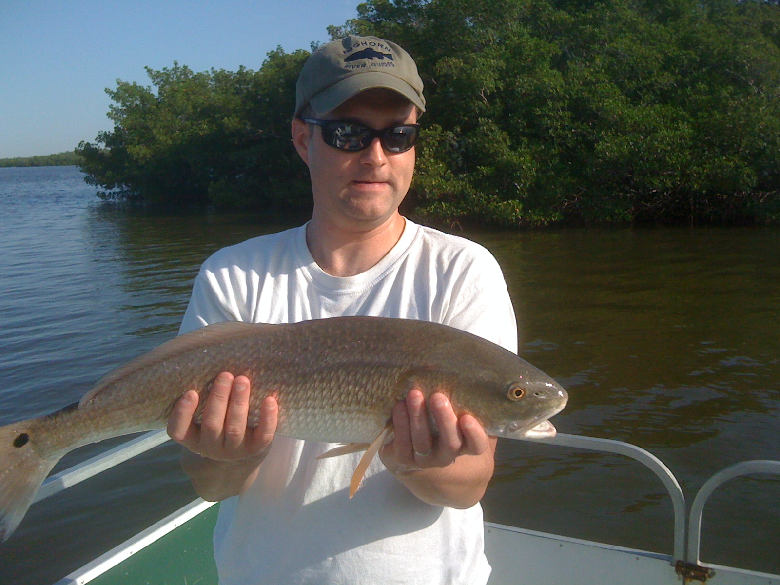 Fishing fort myers beach good time charters for Estero bay fishing report