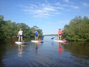 Stand Up Paddleboarding Fort myers beach www.goodtimecharters.com
