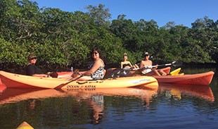 Kayaking on Fort Myers Beach
